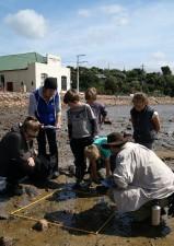 Harbour investigators