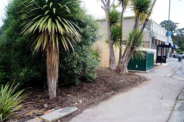 Main street landscaping project - Portobello
