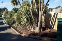 Main street landscaping