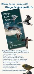Birds Brochure