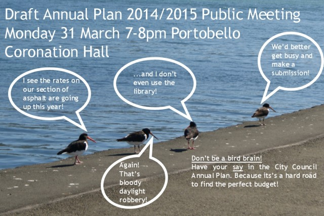 Don't be a bird brain - have your say in the Annual Plan