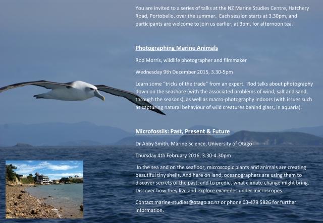 Marine Science Summer Series